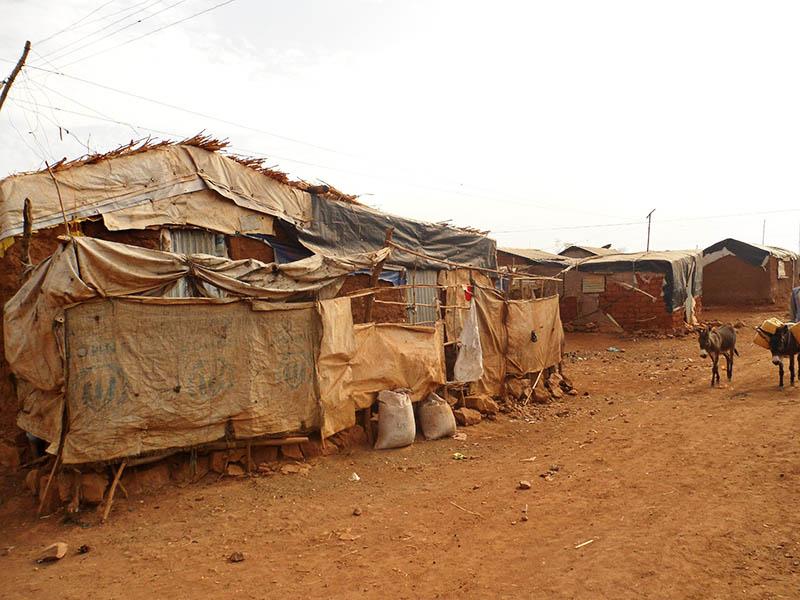 Eritrea on UN Human Rights Council Despite Horrible Record