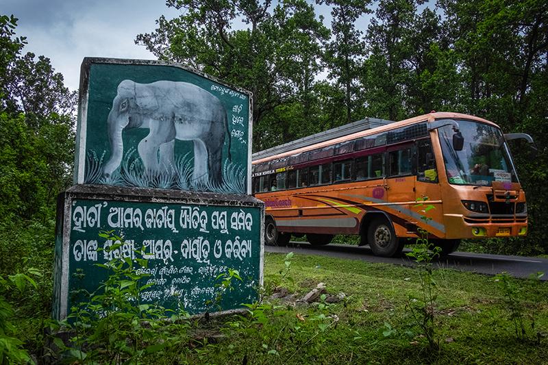 Un autobuz trece un semn de conștientizare a elefanților în zona Kandhamal din Odisha, India.  Kandhamal, Odisha, India.  2018. Foto: John Fredricks
